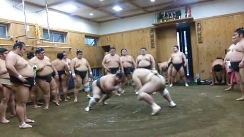 Sumo Morning Practice